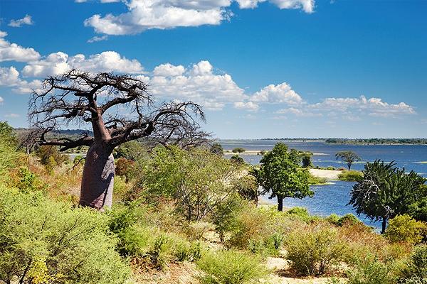 http://arttour.ru/images/country_logo/afrika/botswana.jpg