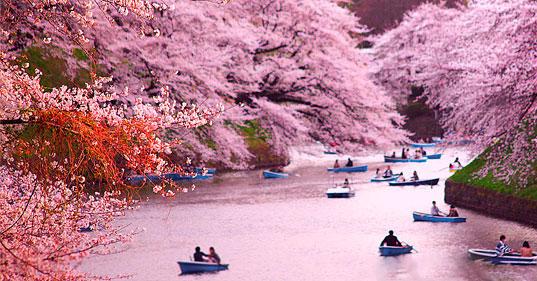 Удобная логистика туров по Японии от «АРТ-ТУР»!