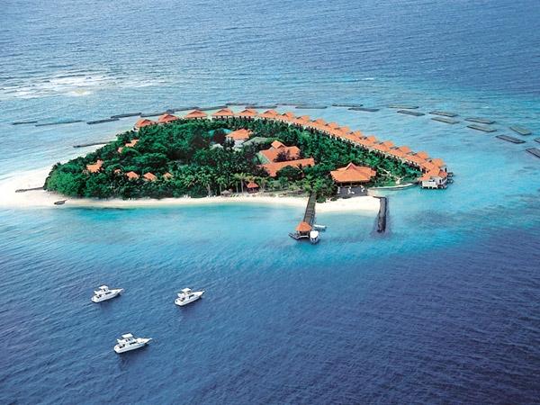 Vivanta by Taj Coral Reef (Мальдивы) - работы по укреплению защитных морских ограждений