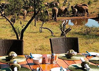 Royal Madikwe Luxury Safari Residence