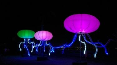 Фестиваль света B-Light