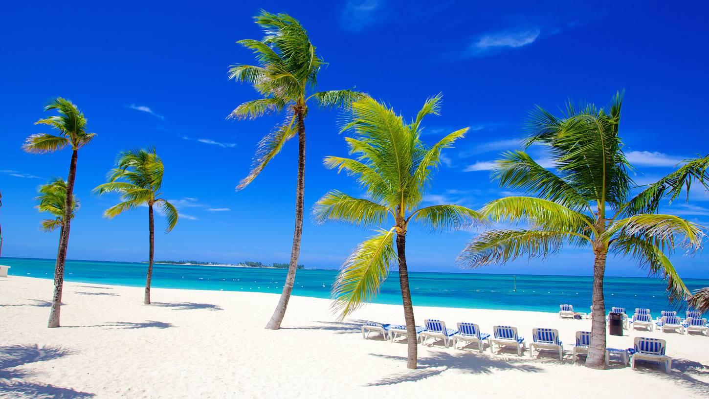 Новый перелет а/к Condor на Багамы: как выиграть iPhone
