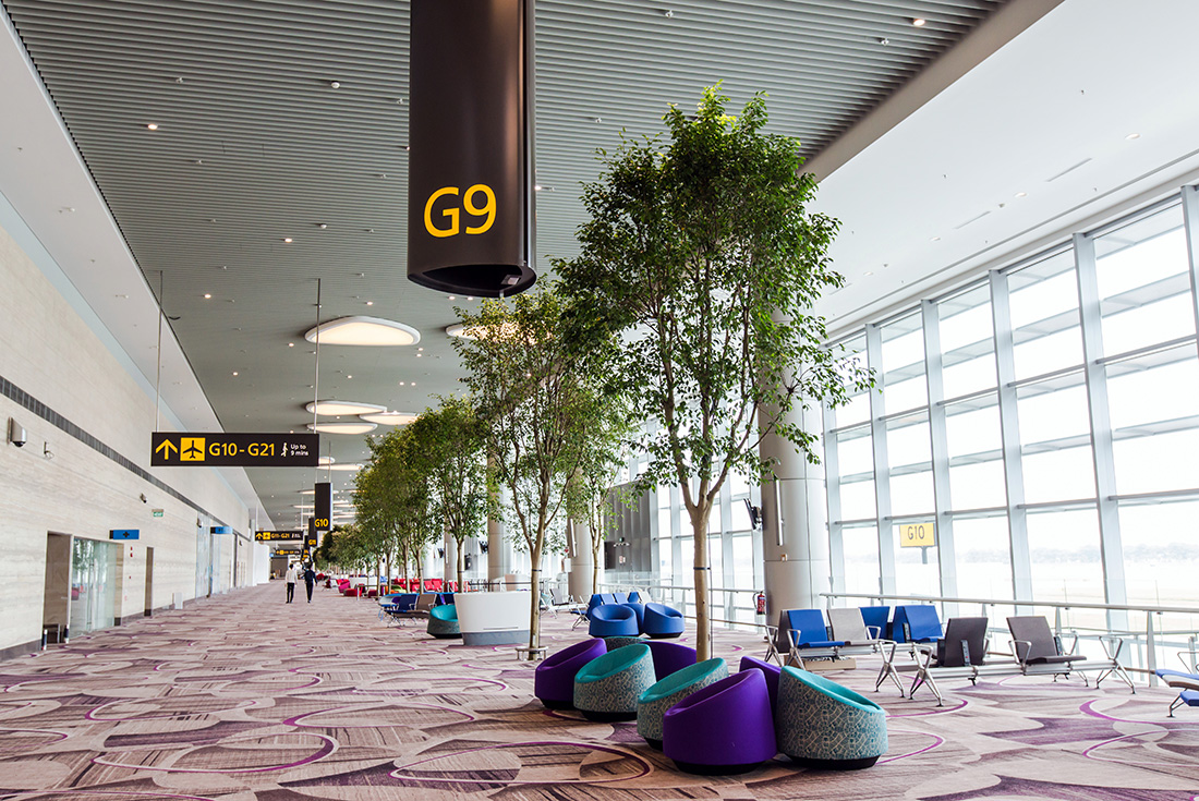 Changi Airport to open Terminal 4