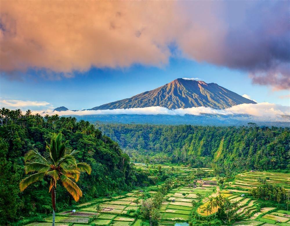 Новости с Бали
