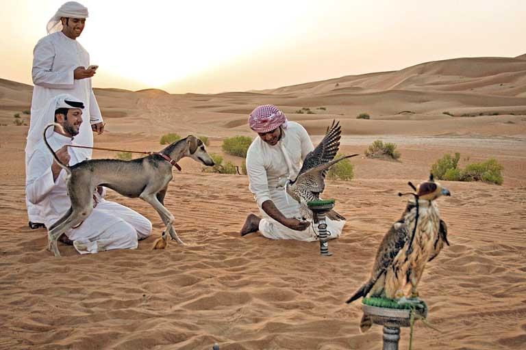 Qasr Al Sarab Desert Resort: окунитесь в прошлое эмирата Абу-Даби!