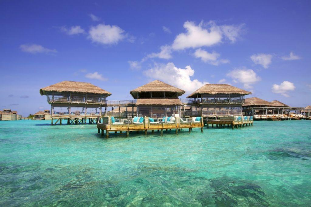 Мальдивы. Акция для менеджеров турагентств!